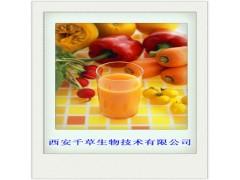 甜橙浓缩汁粉
