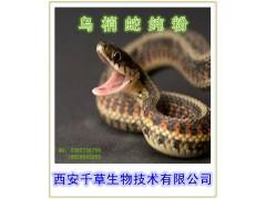 药食同源 乌梢蛇提取物  乌梢蛇粉