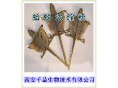 蛤蚧提取物采用优质原料纯天然提取西安千草生物厂家生产国内包邮