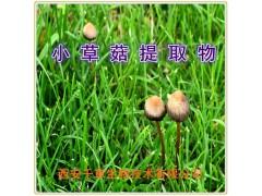小草菇提取物
