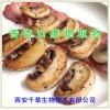 香杏口蘑提取物