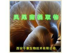 凤尾菇提取物 厂家供应凤尾菇浓缩粉规格齐全 一公斤起售包邮