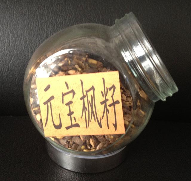 元宝枫籽油——神经酸5%