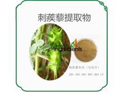 西安荣德生物刺蒺藜提取物刺蒺藜皂甙 20% 40% 98%