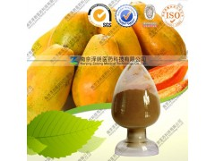 QS厂家现货供应木瓜提取物,木瓜浓缩粉,木瓜粉