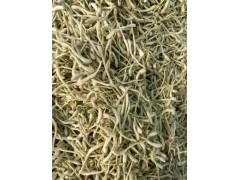 QS厂家现货供应金银花提取物,绿原酸5%~98%