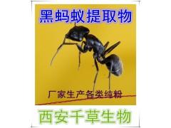 黑蚂蚁提取物  黑蚂蚁浓缩粉  黑蚂蚁浸膏粉  黑蚂蚁纯粉
