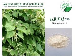 虎杖提取物,白藜芦醇98%,天然白色抗氧化剂