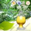 汉黄芩素98%标准对照品