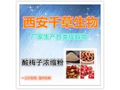 【纯天然酸梅子纯粉】【药食同源】厂家生产 现货热销