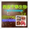 【纯天然酸梅子提纯粉】【药食同源】厂家生产 现货热销