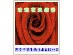 玫瑰花速溶纯粉