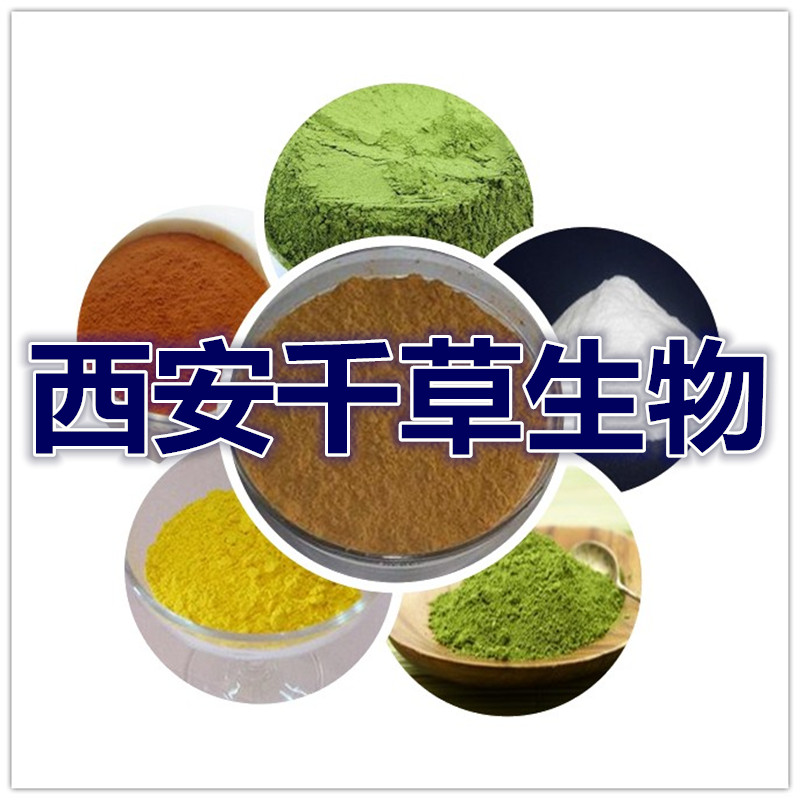 秀珍菇浓缩粉 优质原料纯天然提取 1公斤起售