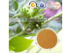 刺蒺藜提取物 纯天然植物提取 代加工 价可询