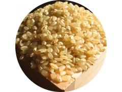 陕西慧科供应 糙米提取物
