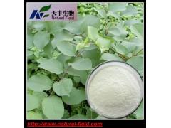 绿原酸10% 金银花提取物   327-97-9
