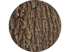 陕西慧科供应 榆树皮提取物