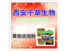 【黄柏提取物】 西安千草 厂家生产 纯天然全水溶 现货供应