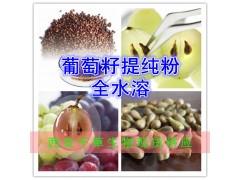 葡萄籽提纯粉 全水溶 西安千草生物 厂家生产直销
