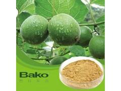 广州罗汉果提取物批发供应 降低血脂营养丰富优质保健品 巴科