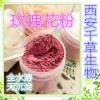 纯天然荷叶浓缩粉的功效作用 西安千草生物生产