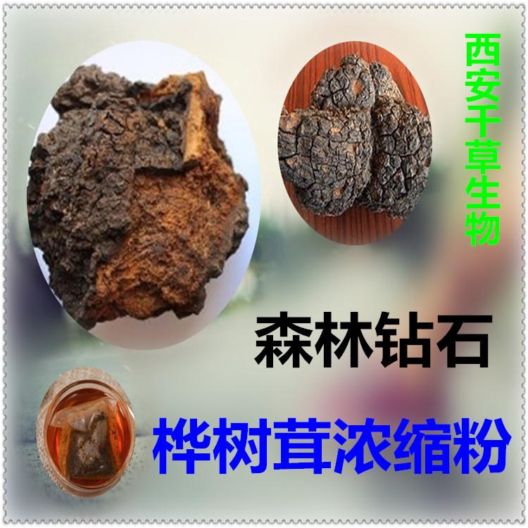 桦树茸浓缩粉 纯天然浓缩 现货热销 西安千草生物