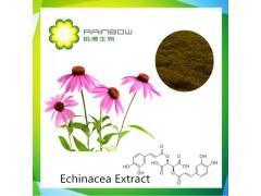 500余亩原料基地 紫锥菊提取物 紫锥菊多酚 菊苣酸