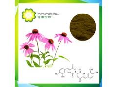 紫锥菊提取物 USP标准 紫锥菊多酚4%液相HPLC
