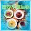 淡竹叶提取物的功效作用 西安千草生物生产