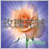 玫瑰花提取物 纯天然全水溶 药食同源 西安千草现货专供