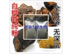 白桦茸提取物 纯天然全水溶  西安千草现货专供