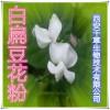 白扁豆花提取物 纯天然全水溶 药食同源 西安千草现货专供