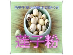 莲子粉 纯天然全水溶 药食同源 实力厂家生产 现货直销