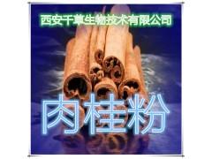 肉桂粉 纯天然全水溶 药食同源 实力厂家生产 现货直销
