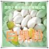 白果粉 纯天然全水溶 药食同源 实力厂家生产 现货直销