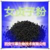 女贞子提取物 国家规定保健品添加 纯植物提取 厂家专供