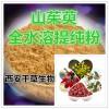 山茱萸提取物 国家规定保健品添加 纯天然提取 厂家生产
