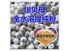 川贝母提取物 国家规定保健品添加 纯天然提取 厂家生产