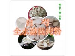 韭菜子浸膏粉 纯天然全水溶  实力厂家生产 现货直销