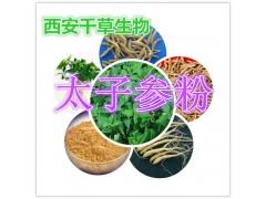 太子参提取物 纯植物提取