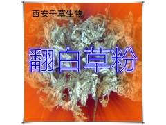 翻白草提取物 纯天然浓缩 全水溶 厂家生产