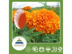 陕西康盛生物供应万寿菊提取物5%~80%质量保证