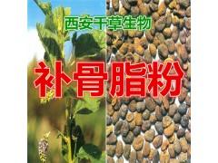 补骨脂提取物 纯植物提取