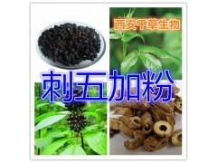刺五加提取物 纯植物提取