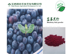 蓝莓果粉 蓝莓提取物 天然提取 100%速溶 厂家直销
