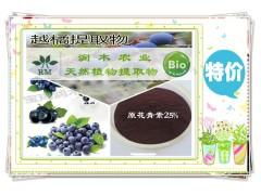 宝鸡润木 厂家供应优质 蓝莓提取物 花青素25%