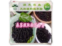 桑葚果粉 桑葚提取物 富含花青素 花色苷 美白抗氧化原料