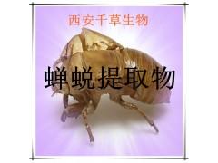 蝉蜕提取物蝉蜕粉