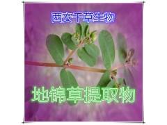 地锦草提取物地锦草粉