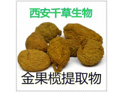 金果榄提取物金果榄粉